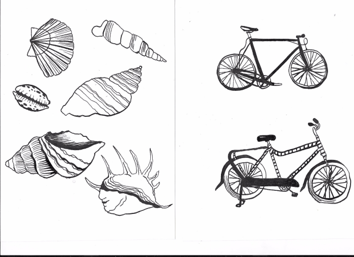 Shells and bicycles, ink on paper
